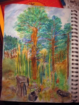 (watercolor) colored-pencils 1,000 feet above Santa Fe, New Mexico elevation 7,198 feet, in the National Forest