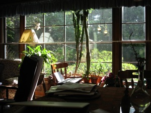 photo of the window which was the source of my watercolor penciled painting.