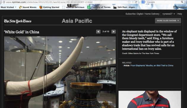 new york times article illicit trade of ivory to China