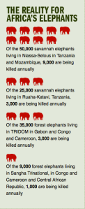 Statistics on Elephants in Africa