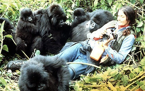 Love & Life | Documentary about Dian Fossey | Life Quotes to Act on (3/6)