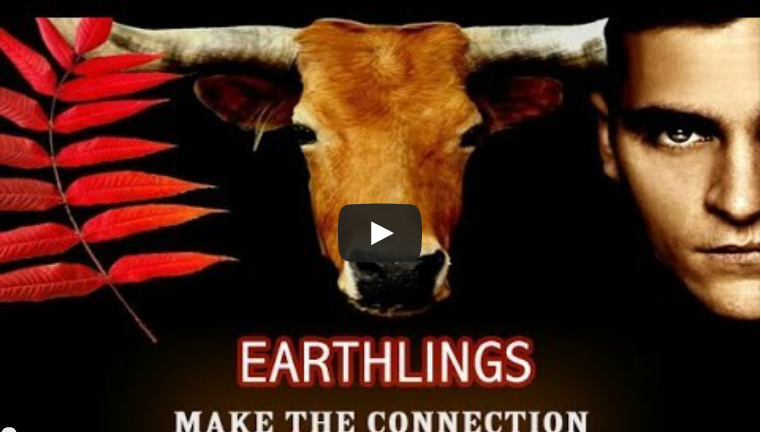 The Truth 'Earthlings'  |  Love Letter to the Earth by Thich Nhat Hanh  |  Kumi Naidoo Greenpeace - Saving the Earth from Ourselves  | 'Only After' Cree Indians (3/6)