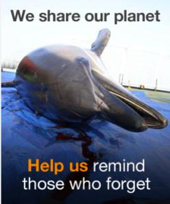 Greenpeace Kumi Naidoo homepage We Share Our Planet Help us remind those who forget