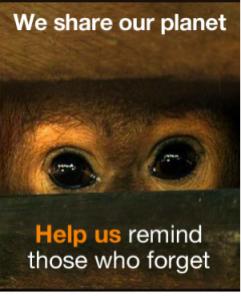 We Share Our Planet, Kumi Naidoo GreenPeace