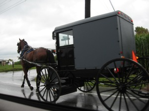 Amish buggy on the road approaching Lancaster PA