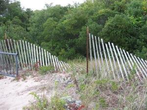 fence Plum Island