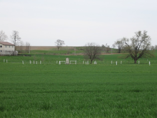 amish_country_green_fields_april