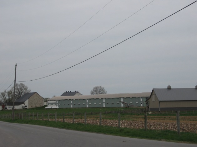 amish_long_green_barn