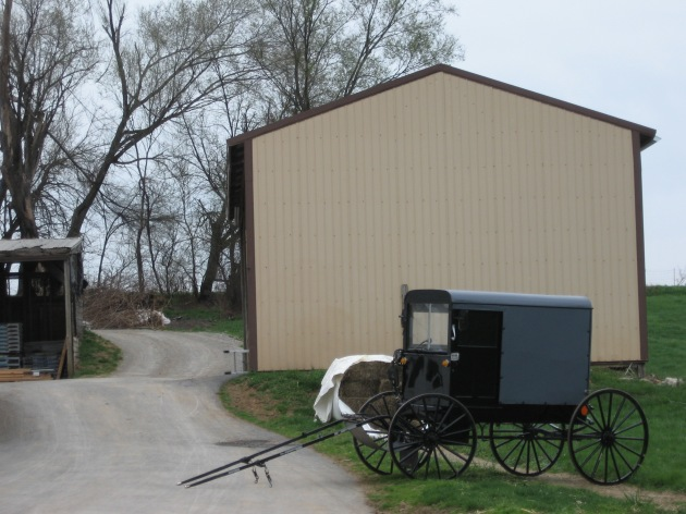parked_buggy_farm