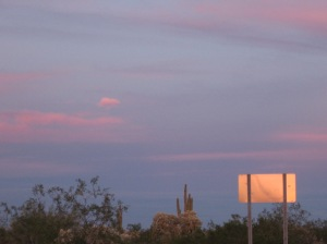 the sunset from all angles on this Sonoran desert feb 19th evening