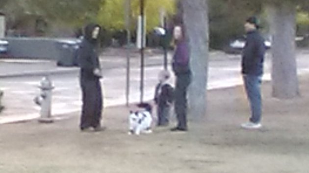 family walking cat to park