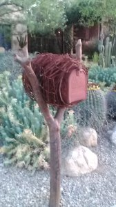 barbed wire nest mailbox