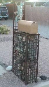 gecko stones encased in metal box