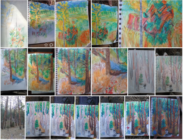 showing the progression - especially in the last series of seven sketches, and final water color painting, which I did on the site the next day in each case. I use Faber Castell colored pencils. I've been living temporarily adjacent to a lovely home, off Hyde Park Rd, 1,000 feet in altitude above Santa Fe, New Mexico.