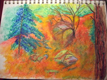 Orange Glow Nov. 27, 2016 - Santa Fe National Forest Faber Castell watercolor pencil series
