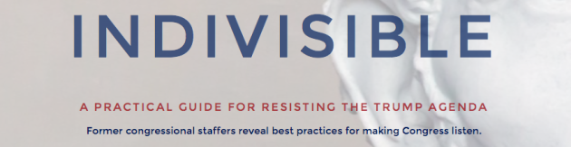 Indivisible a practical guide for resisting the trump agenda