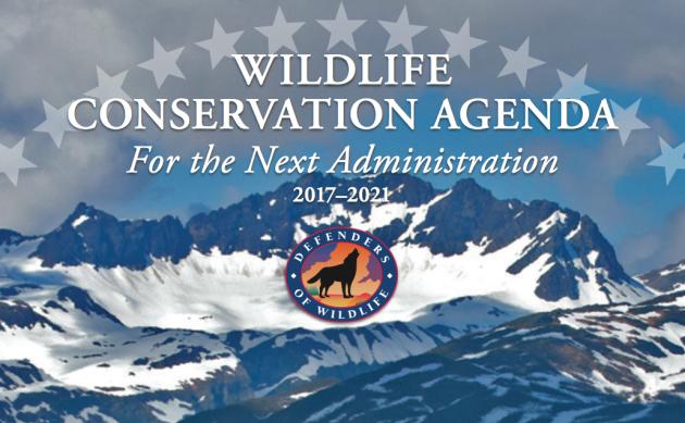 Wildlife Conservation Agenda, Defenders of Wildlife