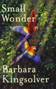 Barbar Kingsolver, Small Wonder_1