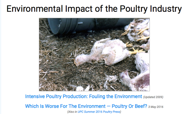 Environmental Impact of the Poultry Industry