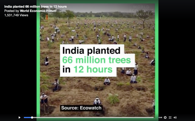 India planted 66 Million trees in 12 hours