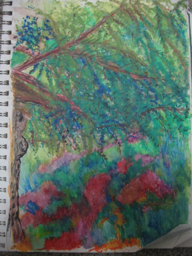 Roger Williams park - The Tree - Progressive creation of captivating tree by Botanical Gardens Providence, Rhode Island | Faber Castell Water Color Pencils - May 5, 2018 cinco de mayo