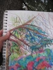 the tree progression