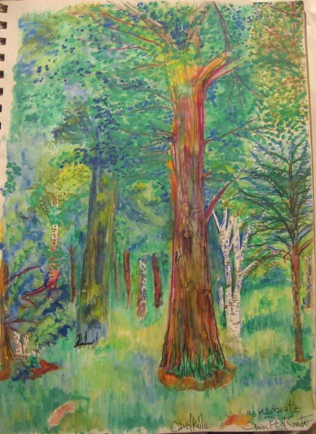 Black Oak Paper Birch SwanPoint