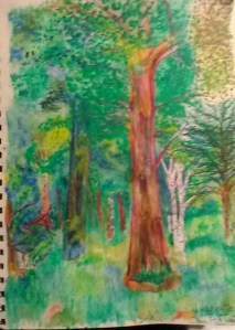 Trees and Sunlight, art, nature, art progression, Carol Keiter, Faber Castell Watercolor pencils Swan Point Cemetery