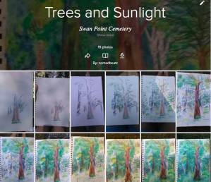 Trees and Sunlight Carol Keiter Faber Castell Watercolor Pencil Progression