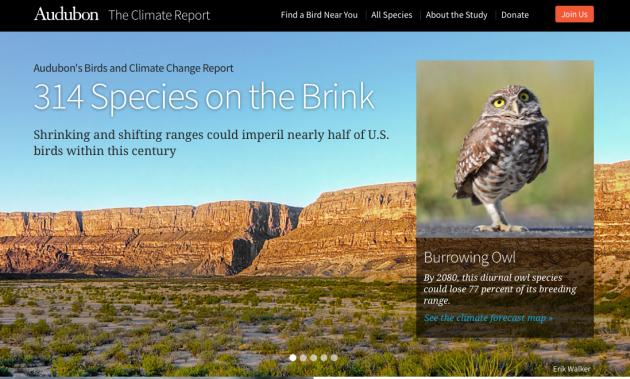 Audubon Birds and Climate Change Report