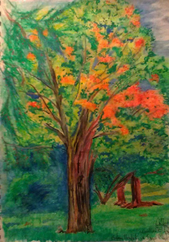 Autumn, colors, Faber-Castell watercolor pencils