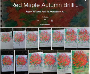 Red Maple painting, Autumn Brilliance