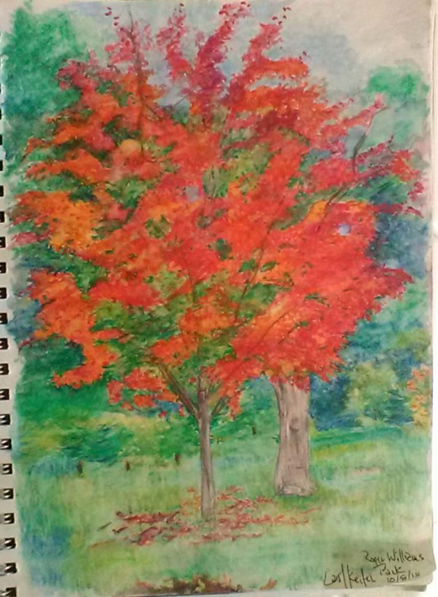 red maple signed
