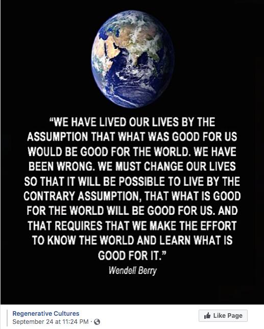 regenerative cultures, Wendell Berry