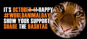 world animal day october 4th