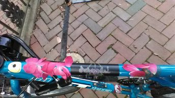 glue flower petals, bicycle