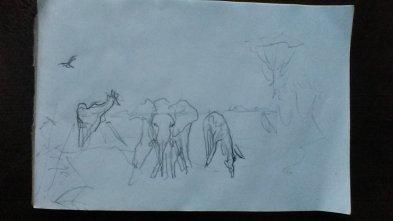 beginning sketch composite of several photographs