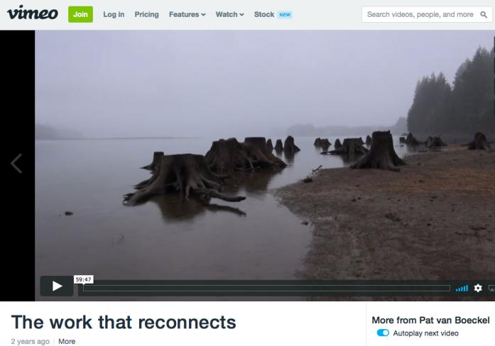 The Work That Reconnects, Pat van Boeckel