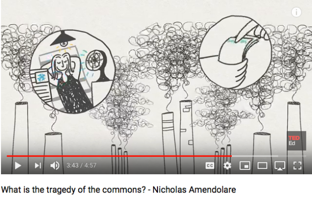 Tragedy of the Commons, Nicholas Amendolare