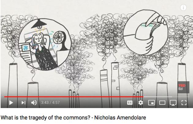 Tragedy of the Commons, Nicholas Amendolare