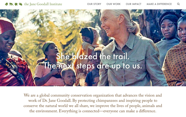 Jane Goodall, Everything is Connected Everyone Can Make a Difference