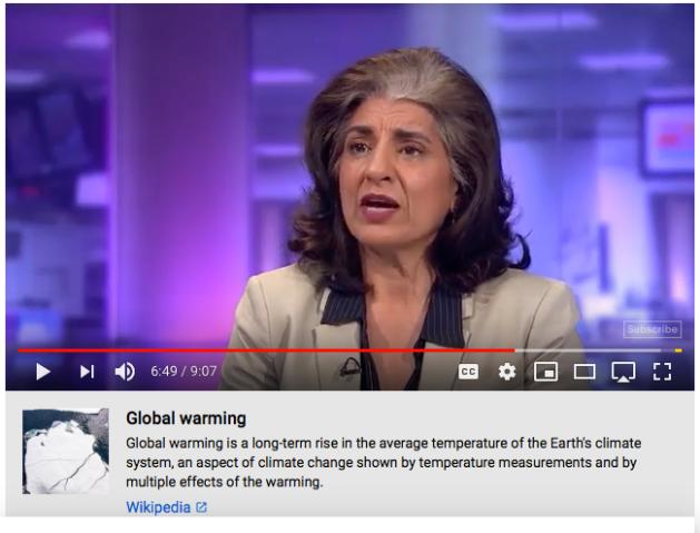 Farhana Yamin Climate Change Lawyer, Paris Climate agreement, arrested XR