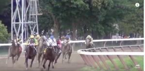 Horse Racing Drugs and Deaths, PETA undercover- investigation PETA
