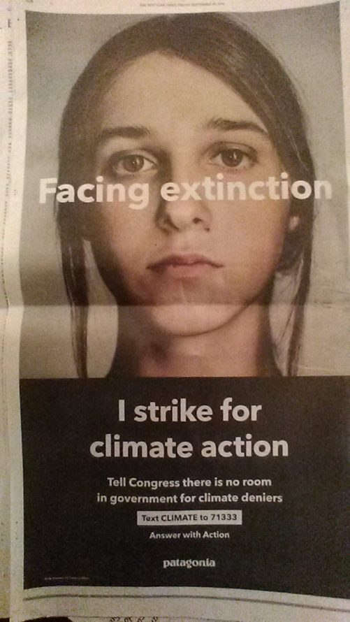 Climate Action , Global Climate Strike, in the midst of 6th mass extinction caused by human overpopulation, development, industry, chemical poisoning, habitat loss, global warming