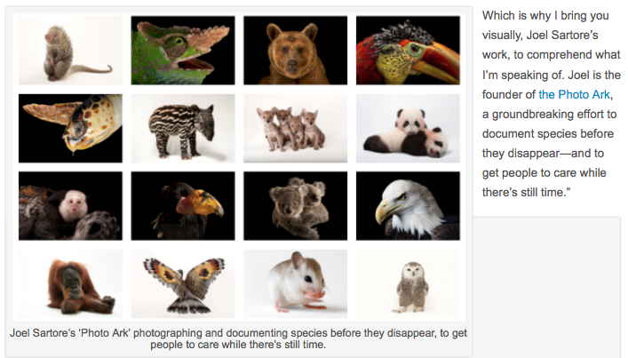 Joel Sartore creator, the Photo Ark, document all creatures before they become extinct
