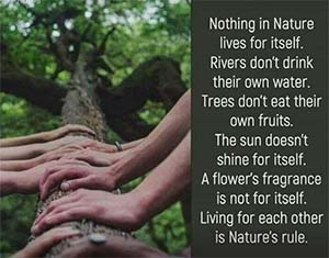 Pantheism, nothing in nature lives for itself, systemic interdependence, harmony